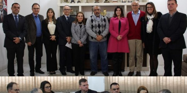 Representantes da Frentas Rio Grande do Sul reuniram-se com o senador Paulo Paim